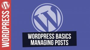 WordPress for Beginners – Working with Posts