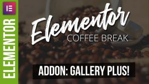 Power Up Your Elementor Galleries – Gallery Plus!